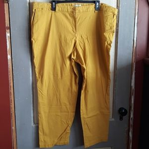 Dalia Collection Mustard pants